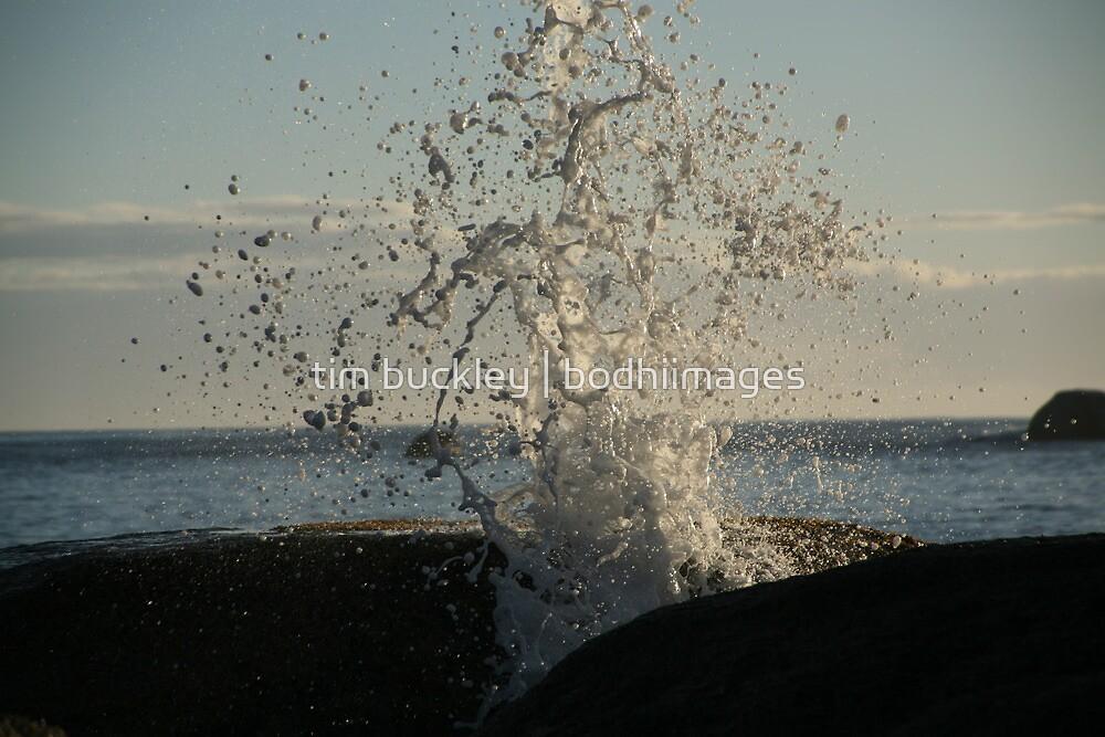 splash by tim buckley | bodhiimages