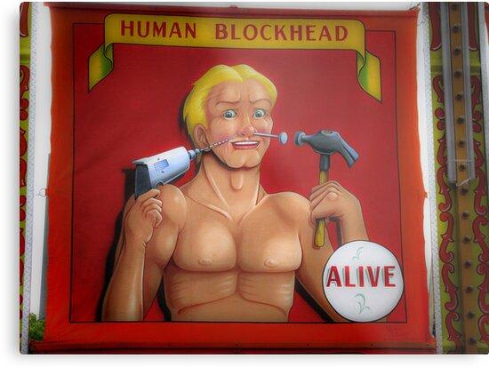 Handyman? by shutterbug2010
