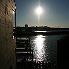 San Francisco, CA: Pier 39 Sunshine by tpfmiller