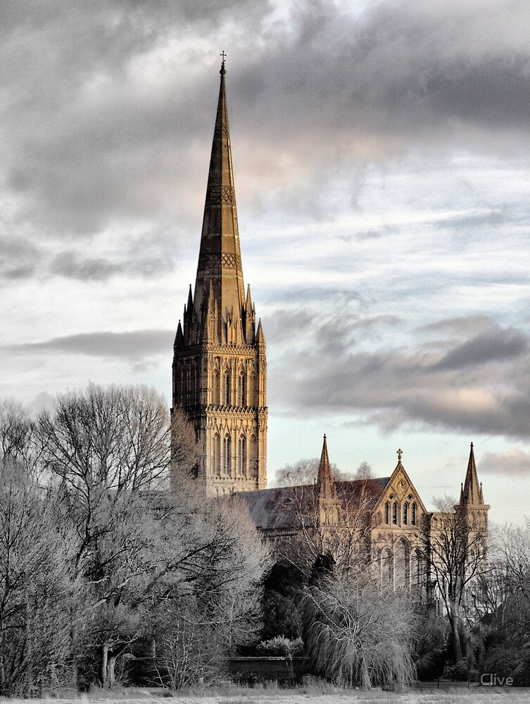 Salisbury Cathedral by Clive