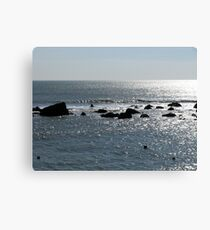 Freshwater on the Rocks Canvas Print