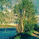 A Midsummer Night's Dream.         Magical Scandinavia.     Doctor Faustus.                 by © Andrzej Goszcz,M.D. Ph.D