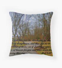 GODu0027S STOREHOUSE OF BLESSINGS Throw Pillow