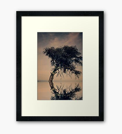 When darkness falls across the sky... Framed Print