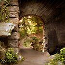 Glen Span Arch 2 by Jessica Jenney