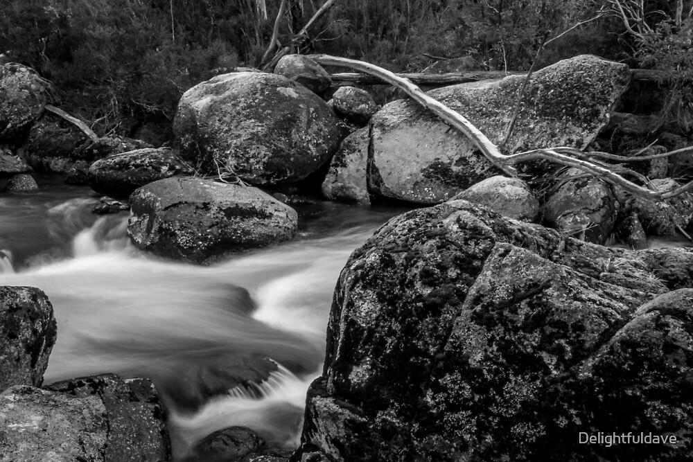 Thredbo river black and white by Delightfuldave