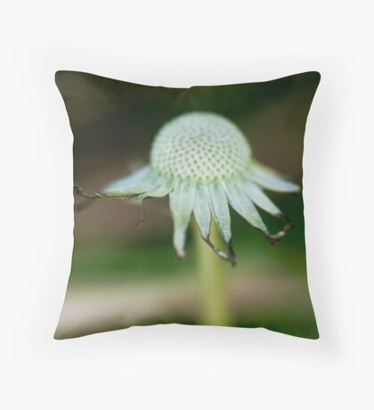 Tonsure Throw Pillow