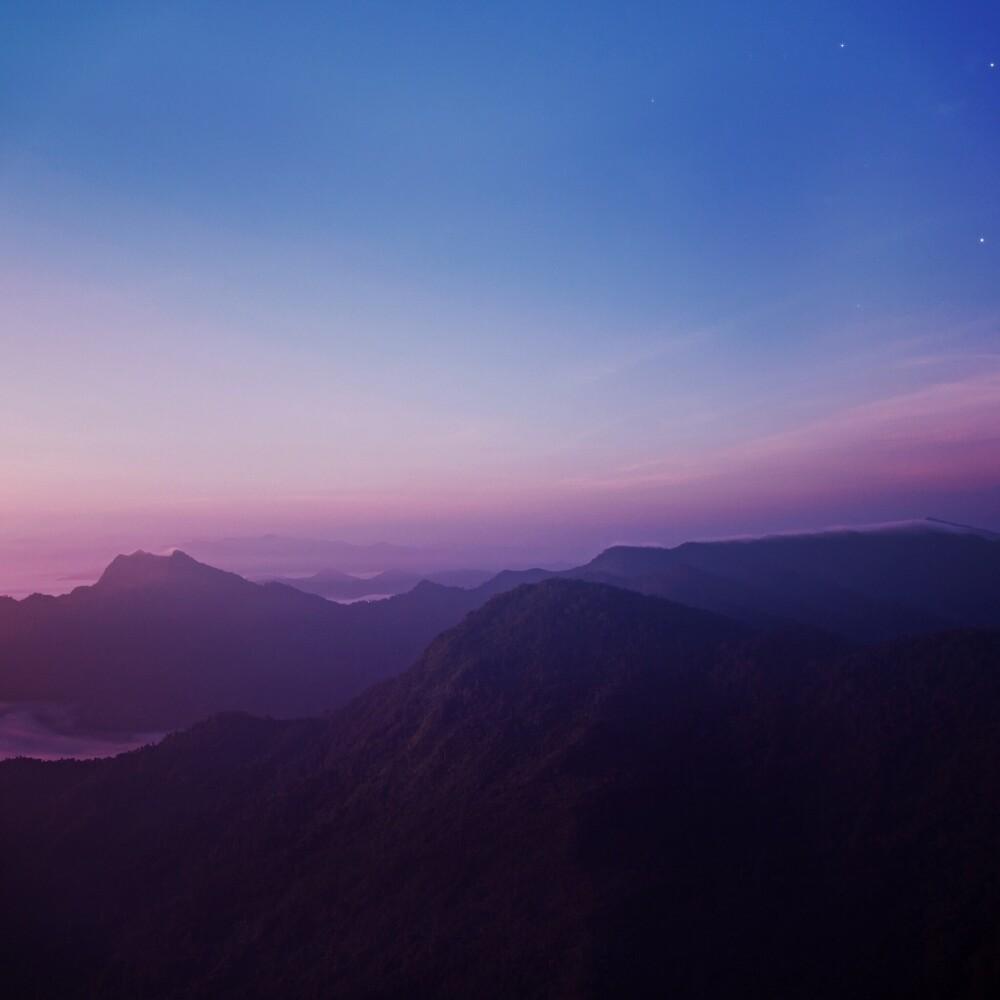 Rise and Shine by Jonah Rosenberg