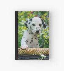 Hey, I`m a Dalmatian puppy Hardcover Journal