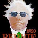 Bernie 2020 by ayemagine