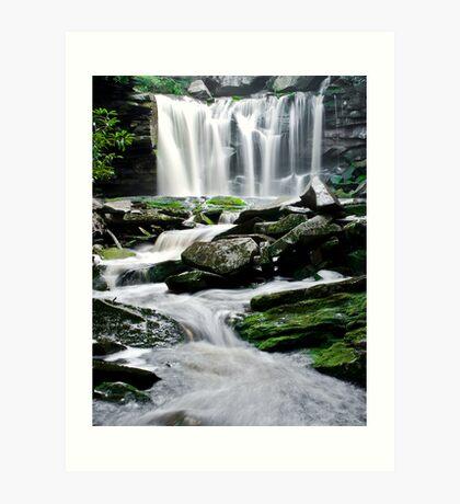 Elakala Falls Art Print