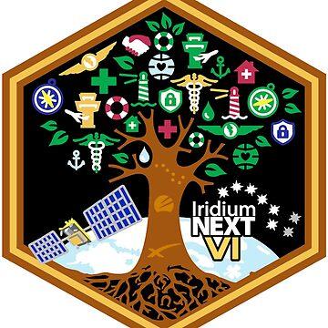 Iridium Next Launch 6 Logo by Spacestuffplus