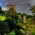 Blarney Castle Gardens by Tom Gomez