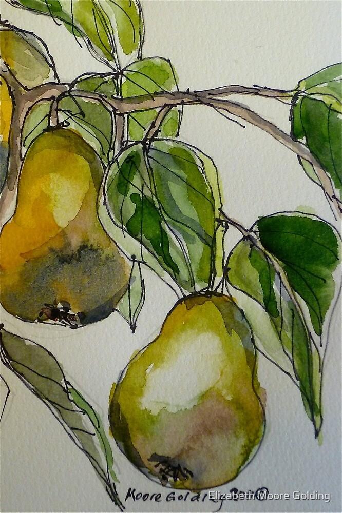 Pears. Detail.  by Elizabeth Moore Golding