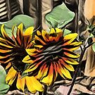 Dreaming of Sunflowers II by dthunderhawk