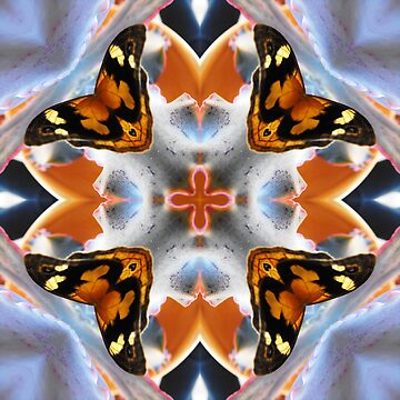 Butterfly Dreams by MaKay