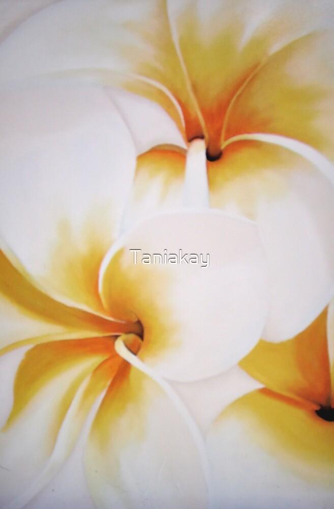 """""""White frangipani""""   by Taniakay"""