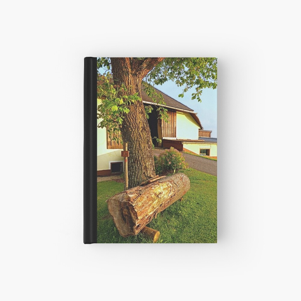 Tree trunk bench on a summer evening | landscape evening Hardcover Journal