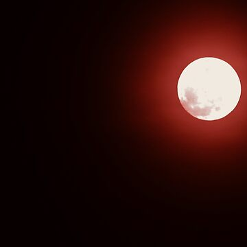 A Blood Moon  by bsample