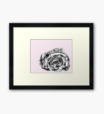 I was dreaming of a rose Framed Print