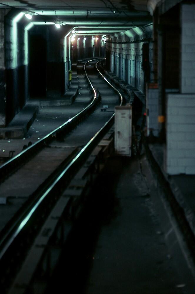 Elusive Path by accozzaglia