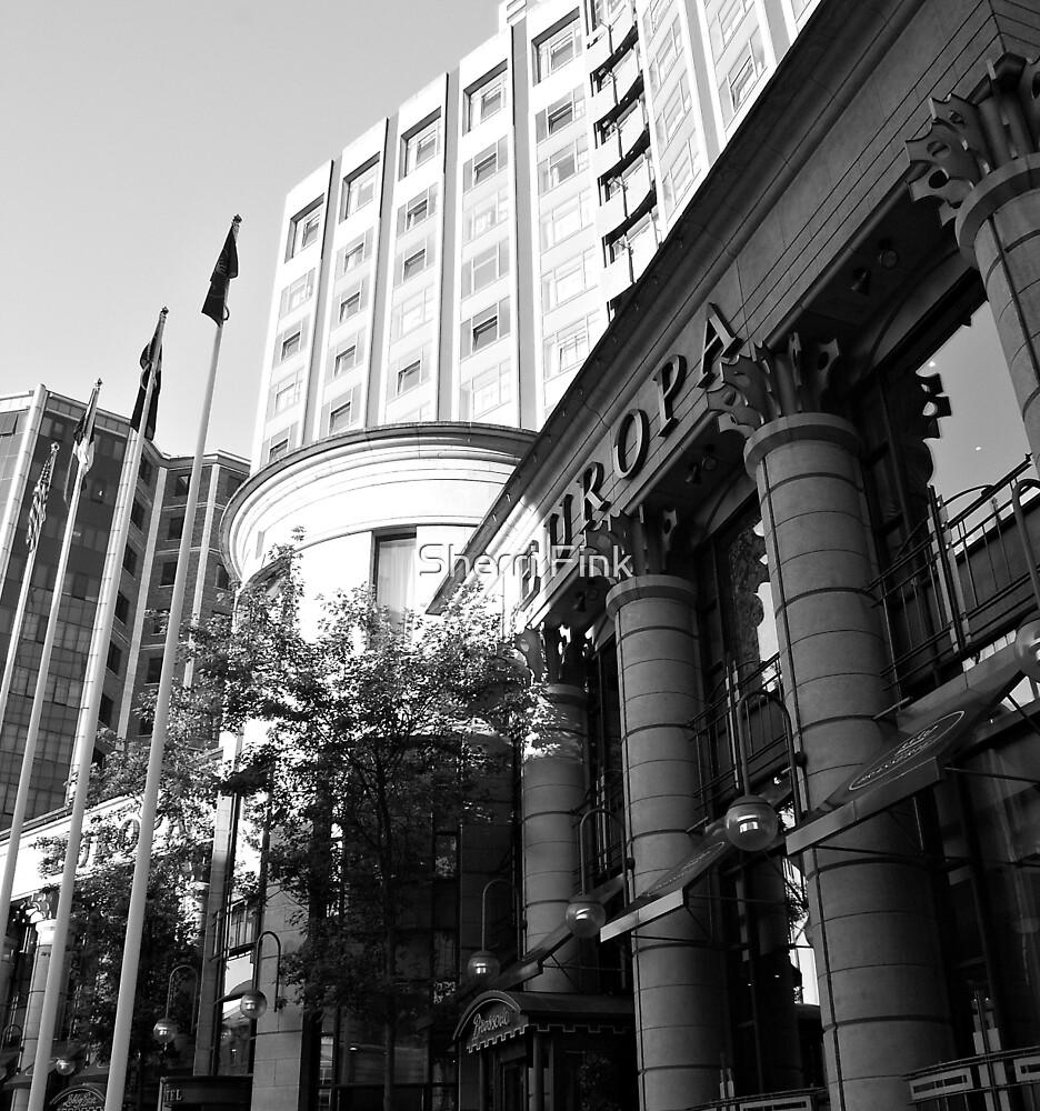 Europa Hotel - Belfast Northern Ireland by Sherri Fink