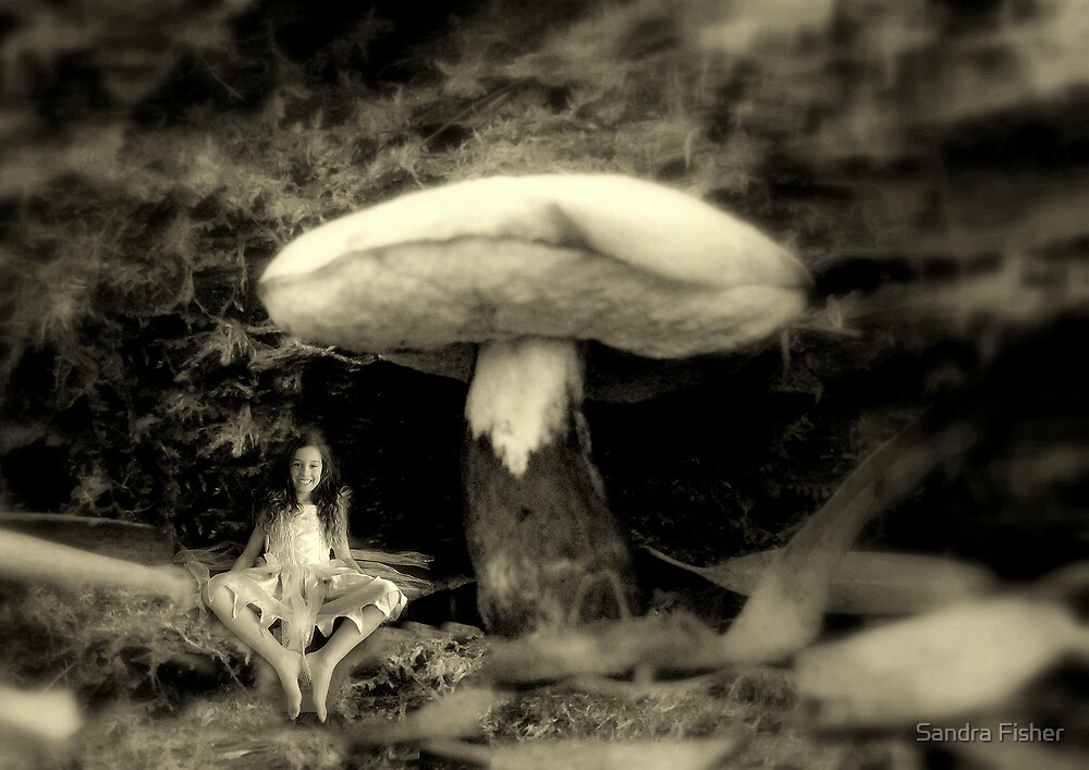 """""""Laughing Fairy."""" by S Fisher"""