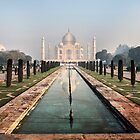 Taj Mahal, Agra, India by Silvia Tomarchio