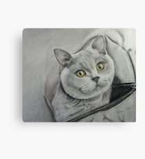 Amber in a bag Canvas Print