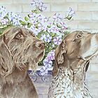 Dogs, Doug and Josh with Petunias by FranEvans