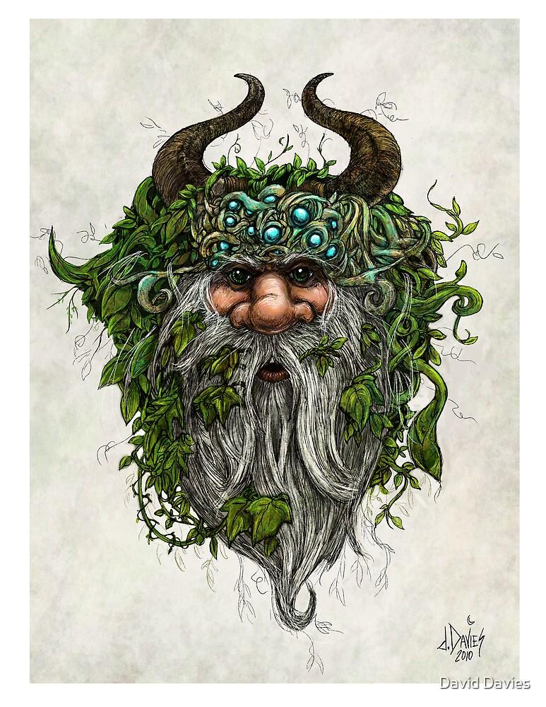 The Green Man by David Davies