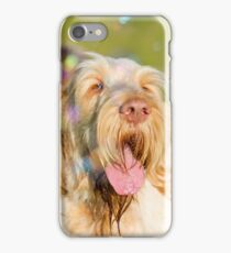 Orange and White Italian Spinone Dog Head Shot with Bubbles iPhone Case/Skin