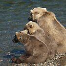 Three Bears waiting by chibiphoto