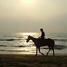"Lone Rider by "" RiSH """