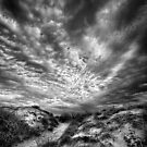 Skyplay by Heather Prince