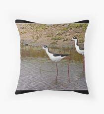 Black necked stilts in water Throw Pillow