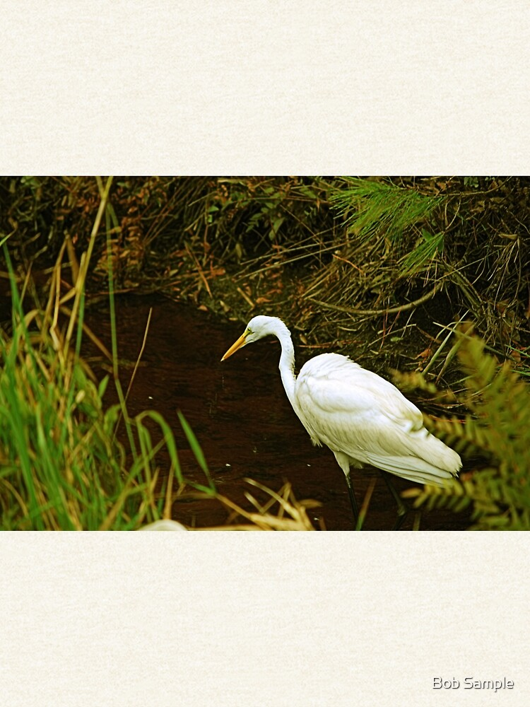 White Heron Looking For Lunch by bsample