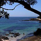The Blue Sea by Evita