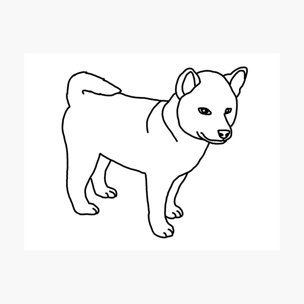 Shiba Inu Puppy Dog Drawing Poster By Nijess Redbubble