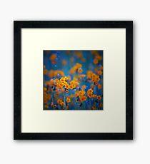 Flower dreams Framed Print