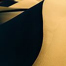 Living dunes by Tomas Kaspar