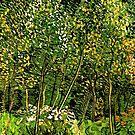 Van Gogh - The Grove by virginia50