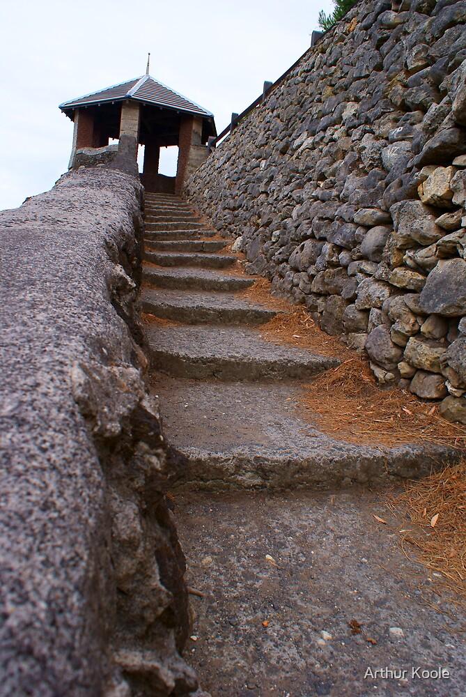 Rocky Steps by Arthur Koole