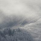 Creag Mhor Mist (2) by ShinyPhoto