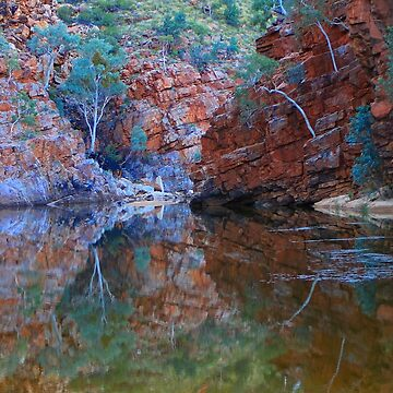 Reflections, Outback gorge, Australia by FranWest