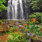 Ellinjaa Falls by Terry Everson