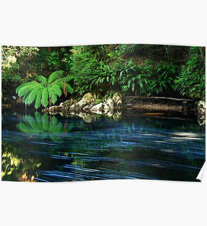 Rapid River  ,nor west Tasmania , Australia Poster