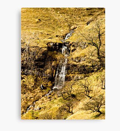 Run Off on North Moor Canvas Print