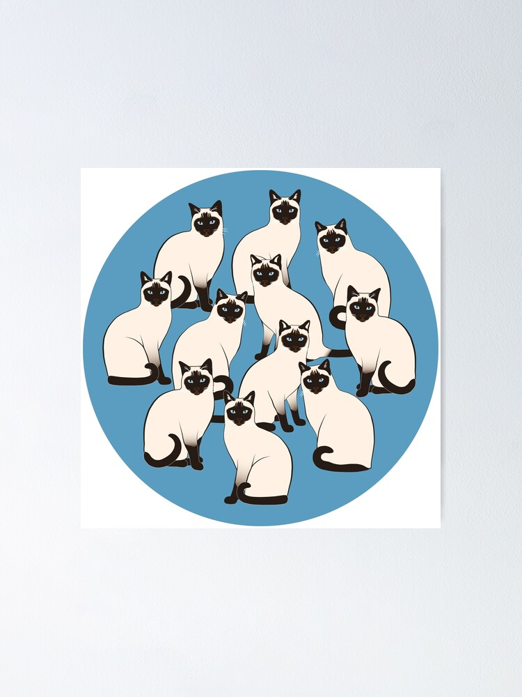 Alternate view of Siamese Cats Circle Poster