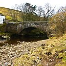 Pack Horse Bridge - Hubberholme by Trevor Kersley
